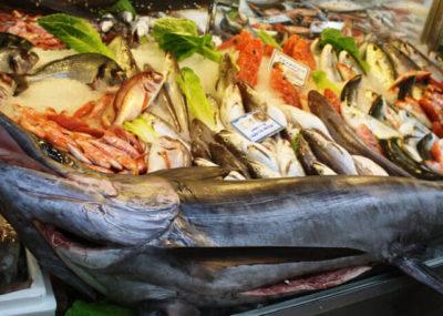 Ο Αργολικός - Το Φρούτο και το Ψάρι